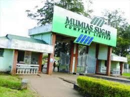 Bitter reality dawns on axed Mumias Sugar staff