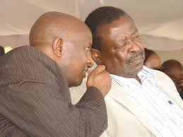The man Mudavadi wants to replace Osotsi as nominated MP