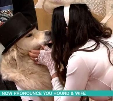 Video:Lonely model frustrated by men marries a dog!