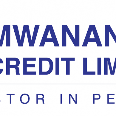 Mwananchi Credit in the spotlight