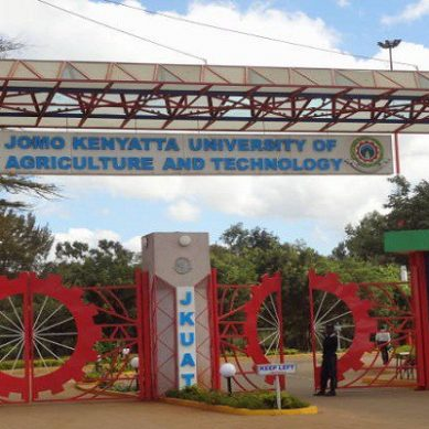 Names of 118 with suspect Jkuat PhDs