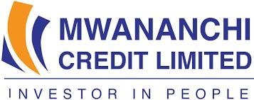 Mwanainchi Credit caught in suspicious car logbook saga