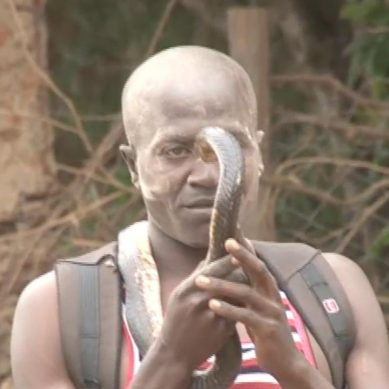 Witch-doctor with  snake blocked  from entering Kenya