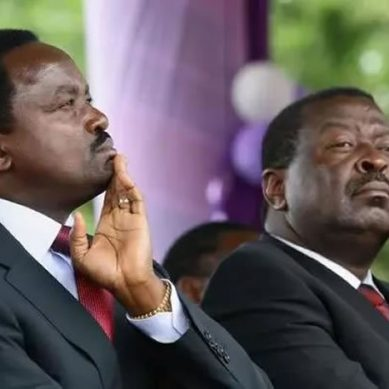 Ruto allienace with Mudavadi, Kalonzo in offing