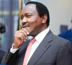 Hanging Kalonzo leaves supporters suspended
