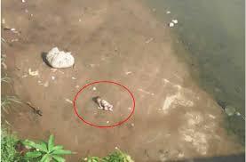 New-born dumped along Narok river