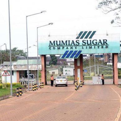Pillow talk rocks Mumias Sugar Company